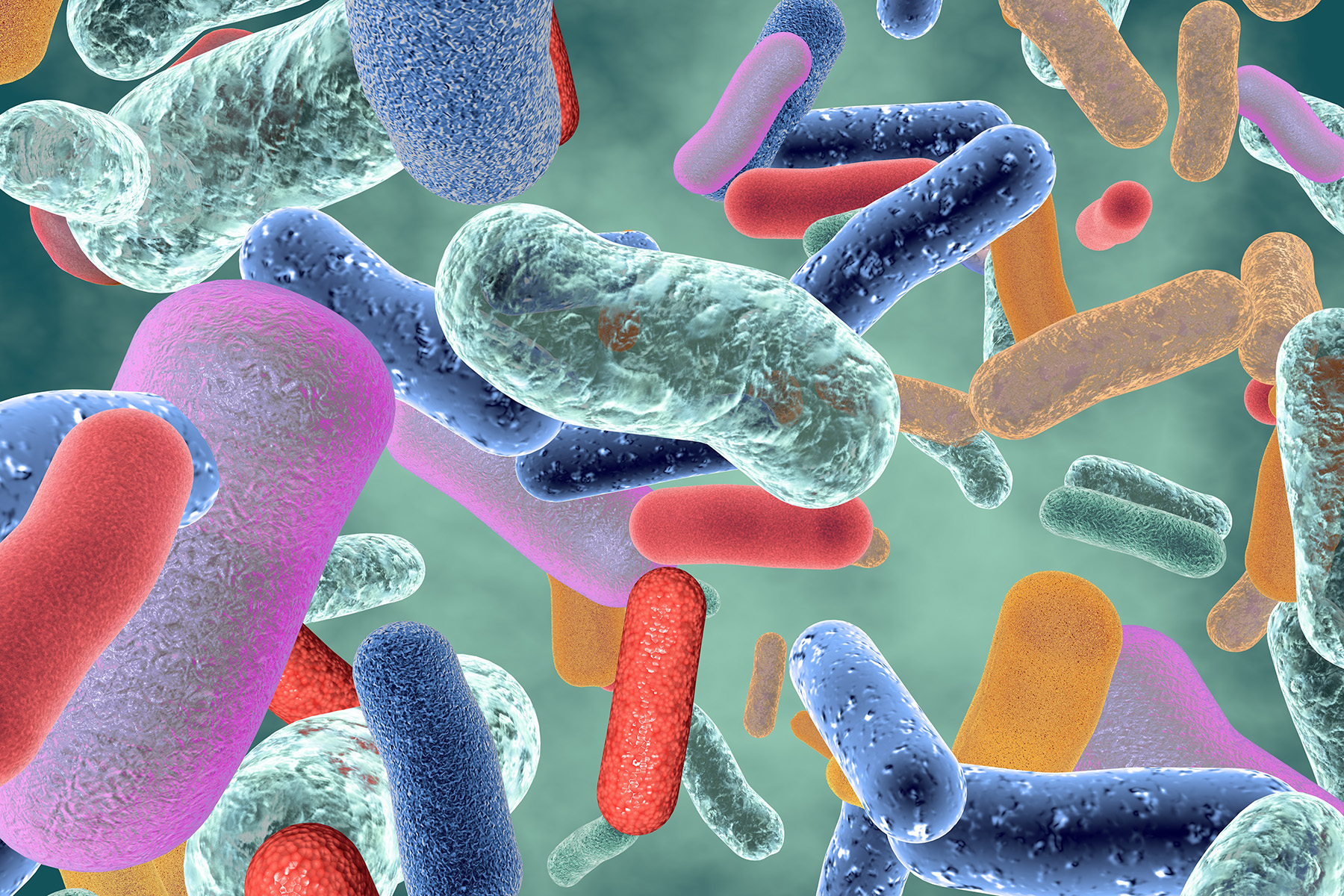 The many faces of the Microbiome - our future health