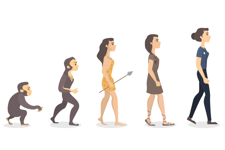 Evolutionary ascent of woman