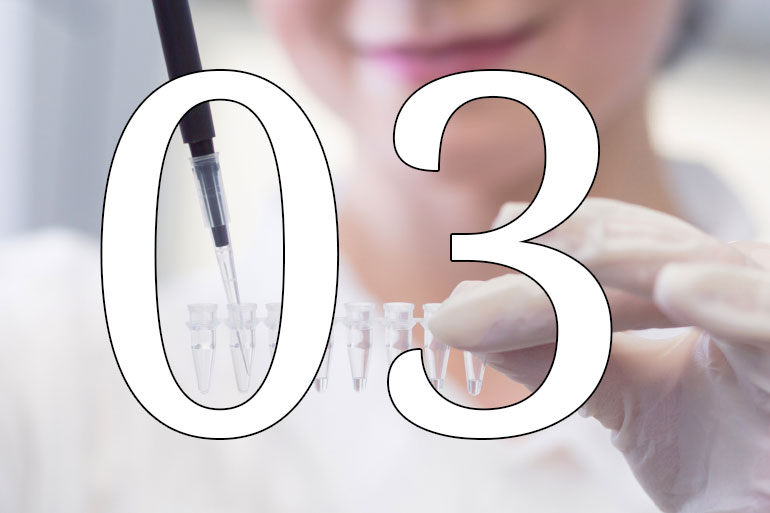 03. PhD life: 10 things we learned in our first six months