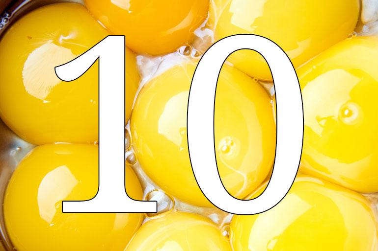10. Salmonella, who gives a faeces?
