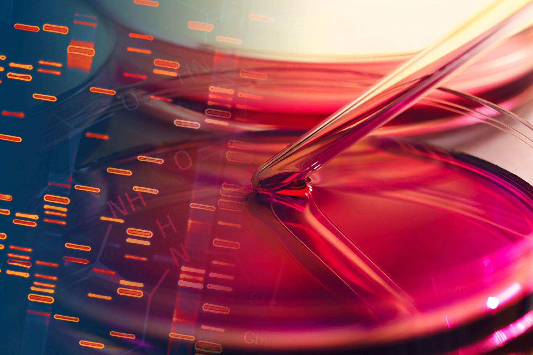 Diagnosing cancer earlier: telomere warning signs