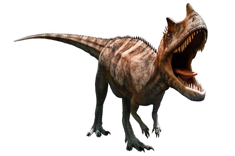 The incorrect search result: Ceratosaurus guamensis