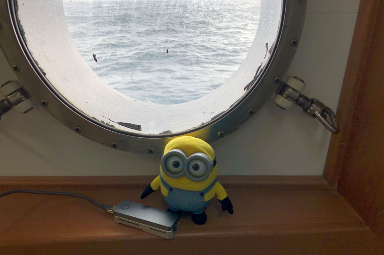 Nanopore MinION DNA sequencer with the other type of minion
