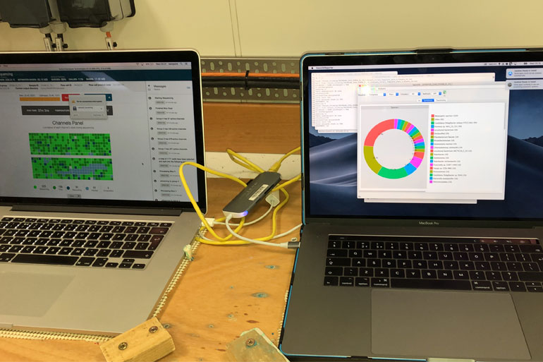 Emma Langan running the NanoOK RT sequencing software