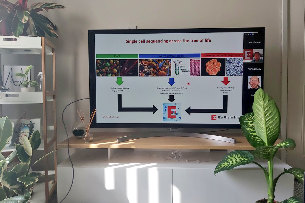 Image: PhD student Anita sets up her screen at home for EI's Single Cell Symposium