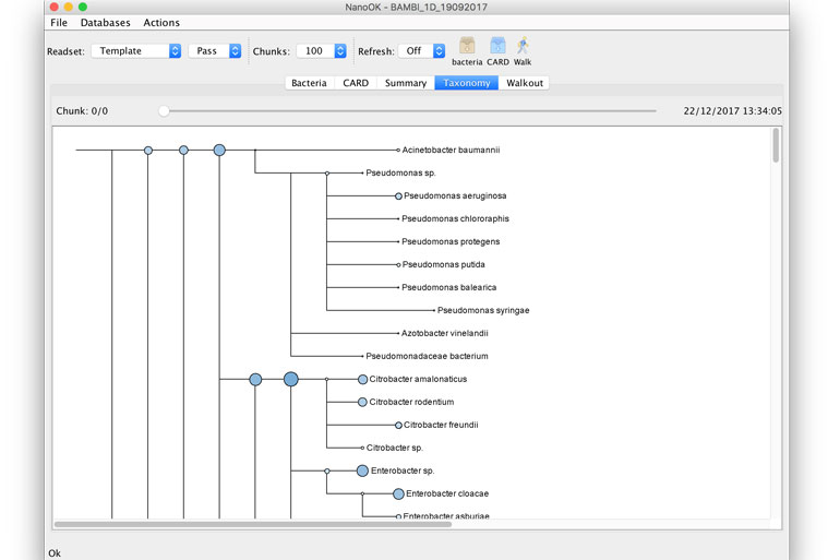 NanoOK Reporter taxonomic tree view showing species classified in sample.