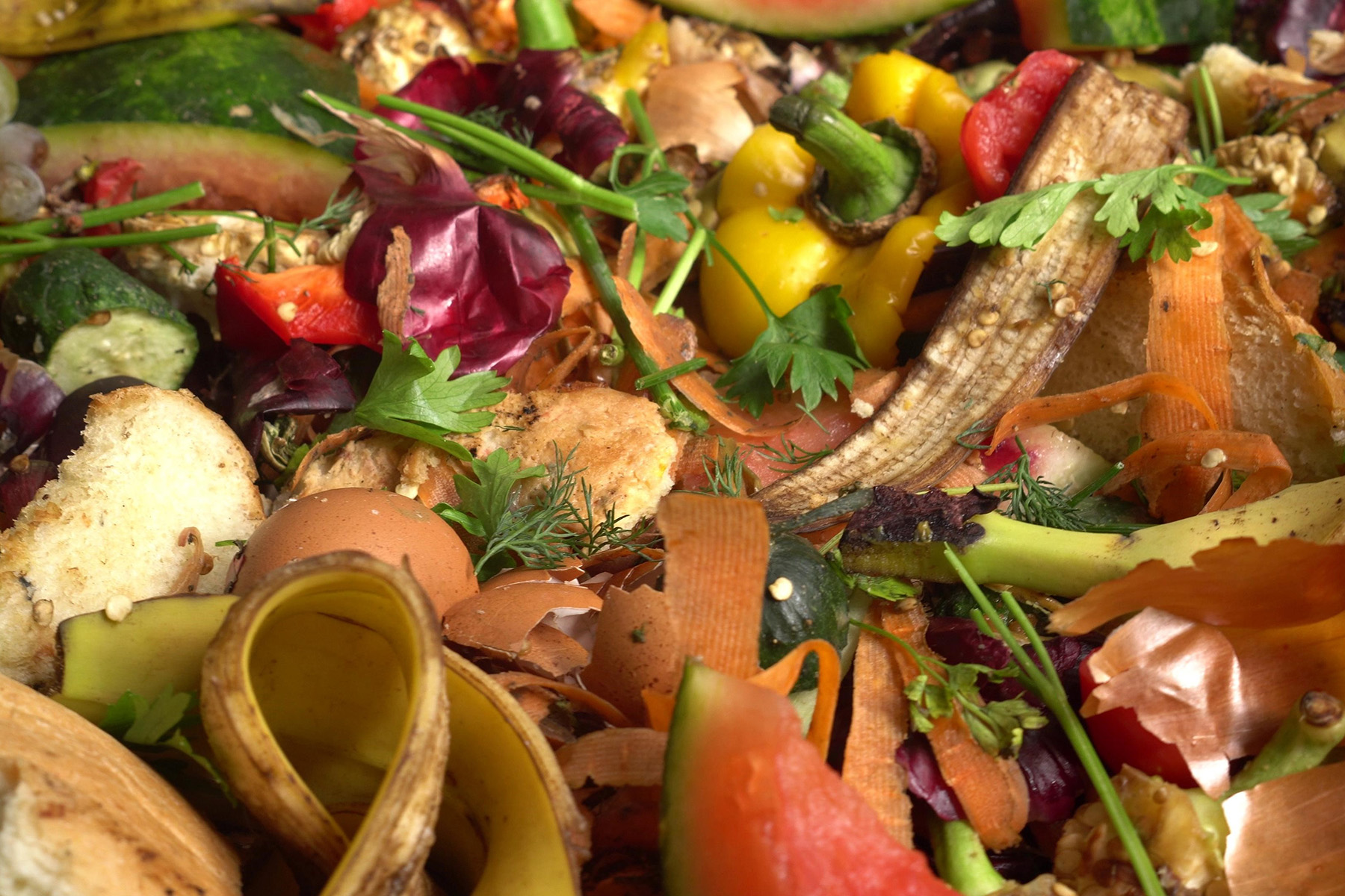 Known as 'waste stations', the anaerobic digestion process uses organic matter such as food waste