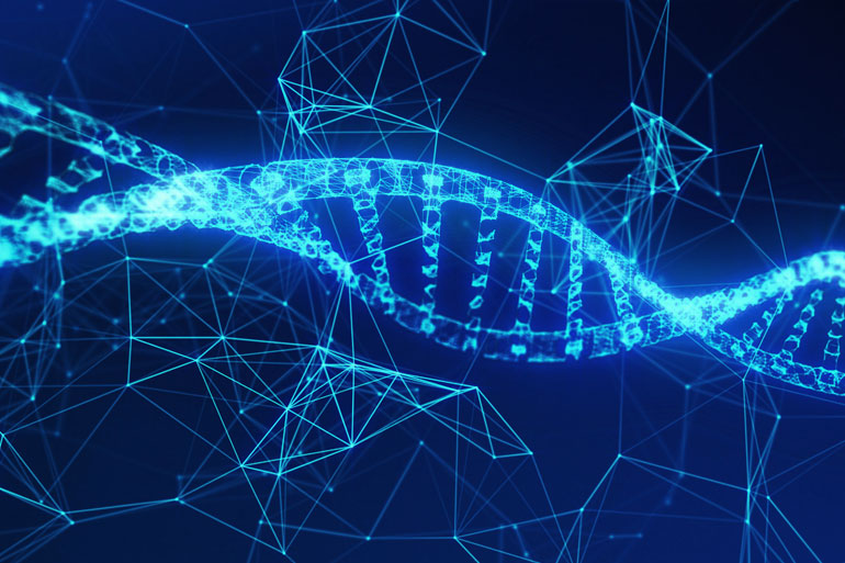 Bioinformatics uses high performance computing to assemble genomic data and understand gene function