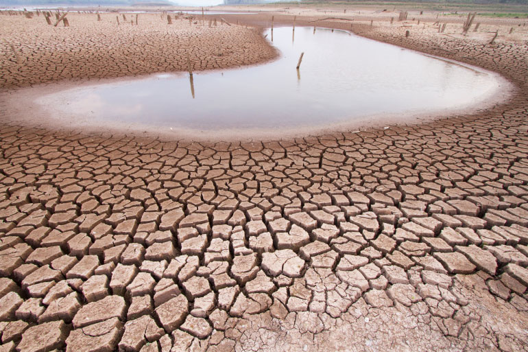 Climate change, biodiversity loss, soil degradation, antibiotic resistance and disease