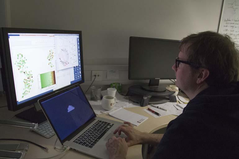 Disease tolerant genes renew hope for UK ash trees