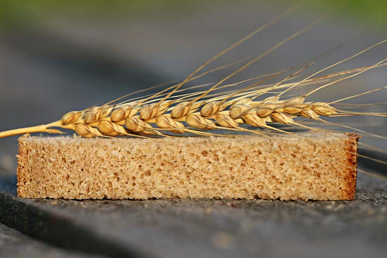 Can we produce a better wheat crop to feed the world? Single to multiple wheat genomics