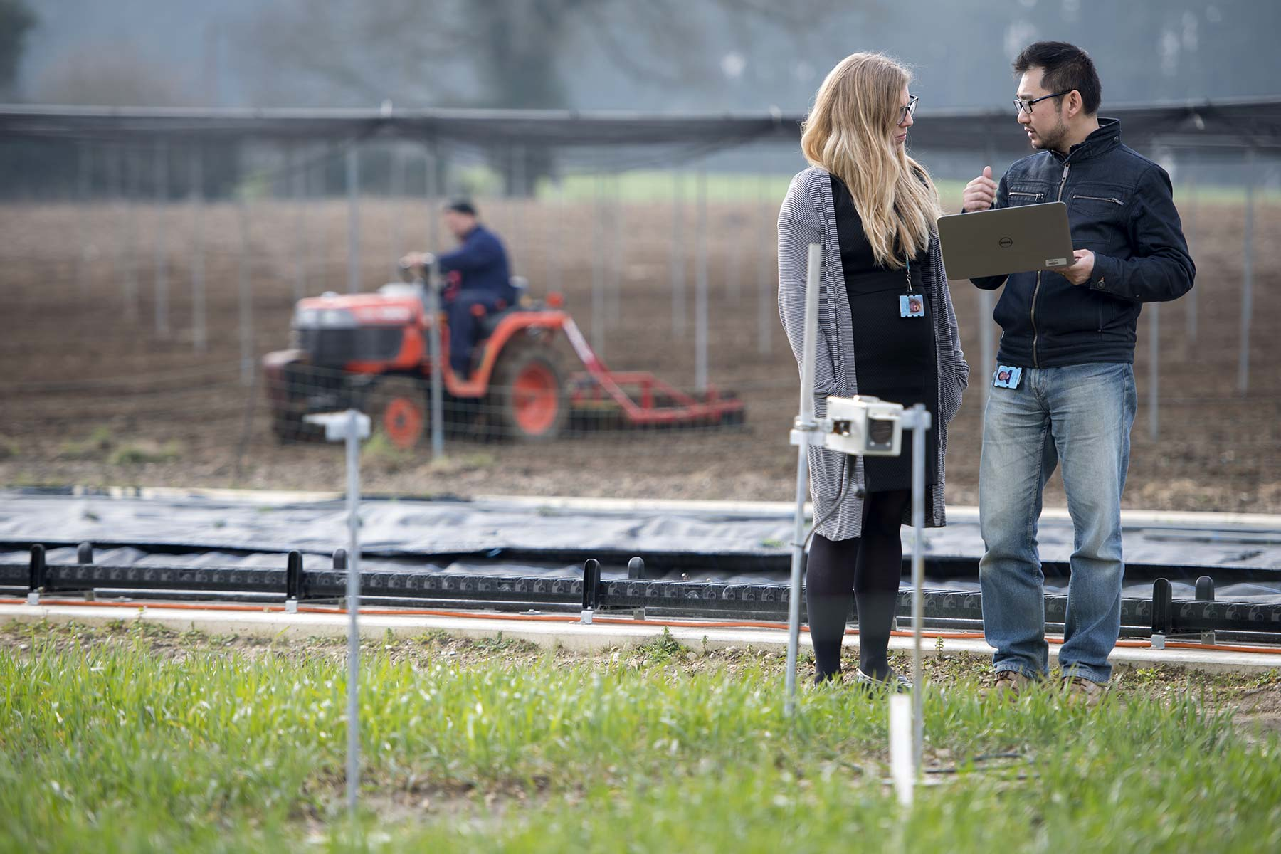 Strike a pose - bringing crop analysis into the 21st Century with automated field phenomics