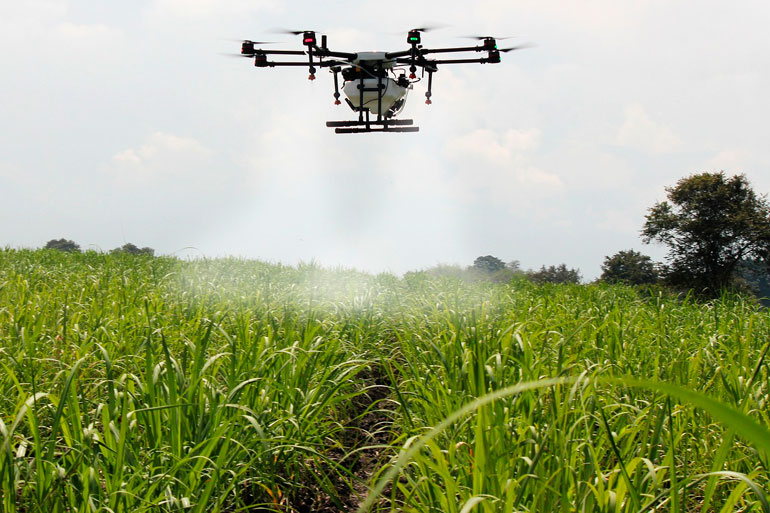 Big-data tool launched to deliver smart agriculture for lab and field