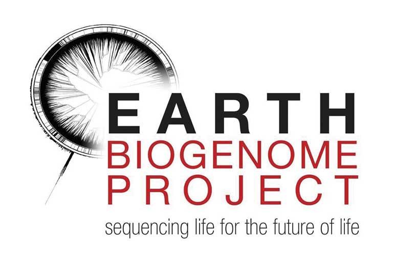 Decoding Life on Earth