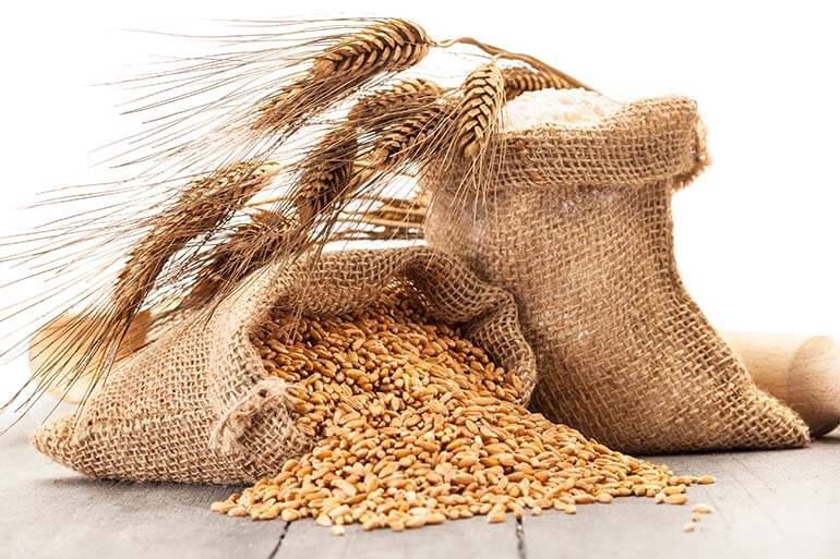 Earlham Institute receives supercomputing award for wheat research