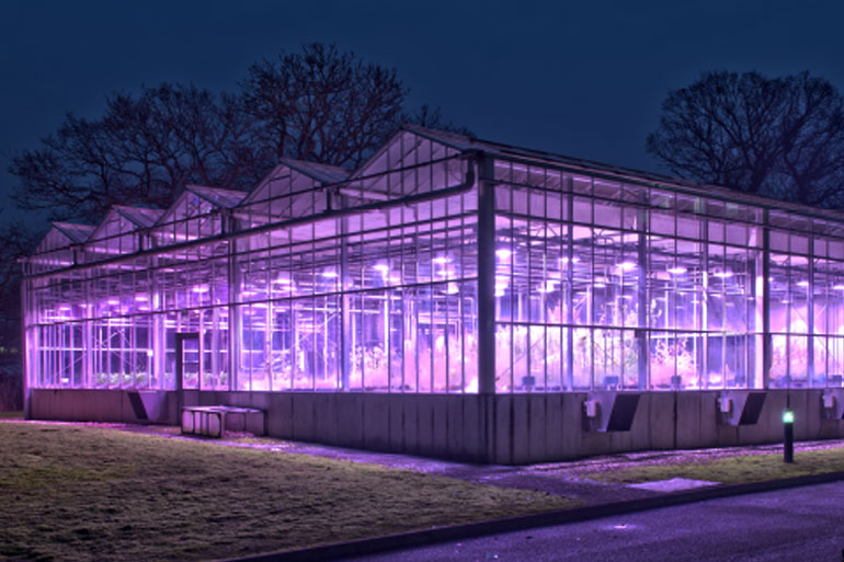 Space-inspired speed breeding for crop improvement