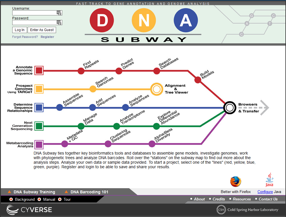 Screenshot of the DNA Subway software showing five lines coloured red, yellow, blue, green and purple from top to bottom