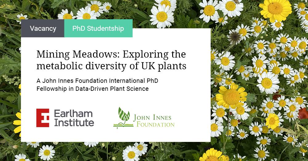 Image: Advert for Mining Meadows - a John Innes Foundation PhD Fellowship