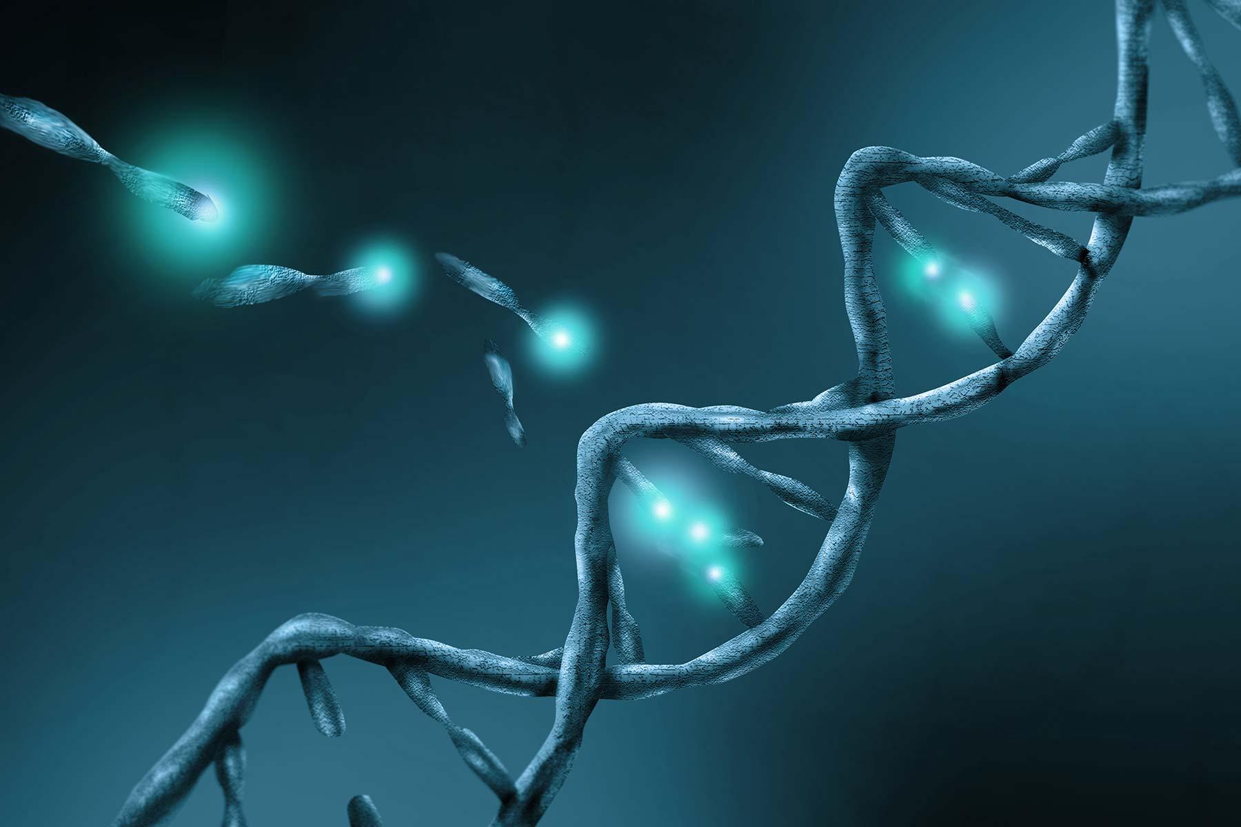 Plant Genome Engineering